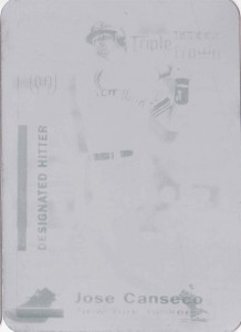 2001 Fleer Triple Crown Printing Plate 1/1